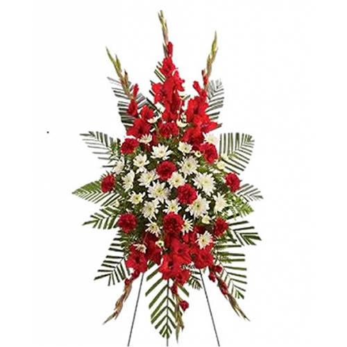 Lágrimas De Flores Rojas Con Margaritas Blancas Y Lluvia