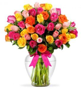 Cómo Cuidar Las Rosas Colores Y Su Significado Blog Sofiflor
